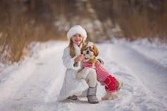 Маленькая девочка идет с ее любимым tzu shih щенка Стоковая Фотография
