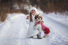 Маленькая девочка идет с ее любимым tzu shih щенка Стоковая Фотография RF