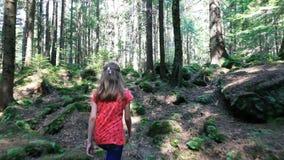 Маленькая девочка идет через лес на солнечный день видеоматериал