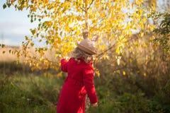 Маленькая девочка идя в парк, день осени Стоковые Изображения