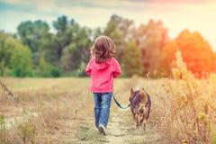 Маленькая девочка идя с собакой на поле стоковое фото