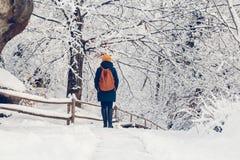 Маленькая девочка имеет прогулку через толстый лес во время красивого зимнего дня стоковая фотография