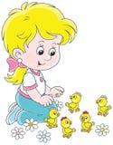 Маленькая девочка и цыпленоки иллюстрация штока
