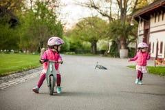 Маленькая девочка наслаждаясь ездой велосипеда на теплый летний день Стоковые Изображения