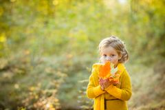 Маленькая девочка на листьях удерживания осени Маленькая девочка в желтом связанном пальто в парке осени Девушка в руках стоковая фотография rf