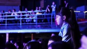 Маленькая девочка сидит на плече человека в толпить зале, наблюдает представление на этапе сток-видео