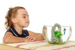 Маленькая девочка смотрит рыб которые плавают в аквариуме Стоковое Изображение
