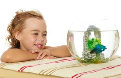 Маленькая девочка смотрит рыб которые плавают в аквариуме Стоковые Изображения