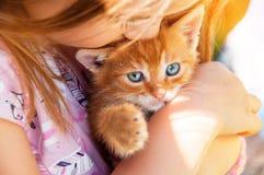 Маленькая девочка с красным котенком в руках закрывает вверх BESTFRIENDS I Стоковое Фото