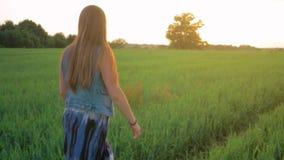 Маленькая девочка с прямыми волосами идя на зеленое поле на заходе солнца Средняя съемка движение медленное акции видеоматериалы