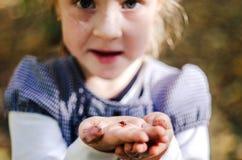 Маленькая девочка с ladybug в ее руках Стоковое Фото