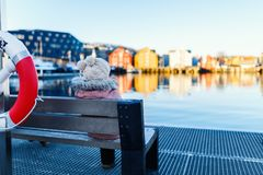 Маленькая девочка outdoors на зиме стоковые изображения