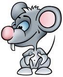 маленькая мышь Стоковое Фото