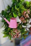 Маленькая розовая миниатюра сада моча консервной банки стоковое изображение rf