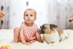 Маленькая смешная кавказская девушка ребенок сидит дома на поле на светлом ковре с лучшим другом собаки полу-породы с Стоковое Изображение RF