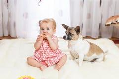 Маленькая смешная кавказская девушка ребенок сидит дома на поле на светлом ковре с лучшим другом собаки полу-породы с Стоковые Фото