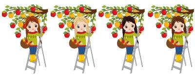 Маленькие девочки вектора милые выбирая яблока от дерева бесплатная иллюстрация