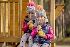 Маленькие девочки в крышке и куртке выпивают лимонад в доме в лесе осени стоковые фотографии rf