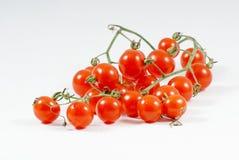 маленькие красные томаты Стоковое Изображение