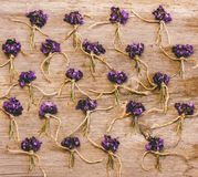 Маленькие пуки полевых цветков и фиолетов на старой деревянной предпосылке Стоковое фото RF