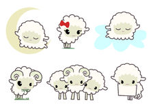 маленькие sheeps Стоковое Изображение