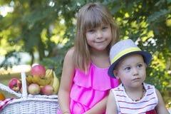 Маленький брат и сестра на пикнике Стоковые Изображения RF