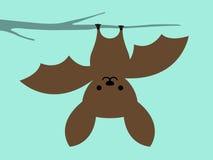 Маленький висеть летучей мыши вверх ногами бесплатная иллюстрация