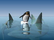 маленький пингвин Стоковое Фото