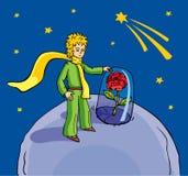 маленький принц Стоковая Фотография
