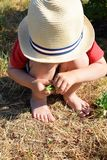 Маленький ребенок держа зеленые горохи стоковое изображение rf