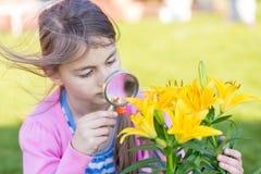 Маленький ребенок играя с лупой в саде Стоковая Фотография RF
