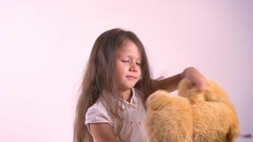 Маленький ребенок играя с плюшевым медвежонком плюша и танцами, игрушкой удерживания, стоя изолированный на розовой предпосылке с акции видеоматериалы