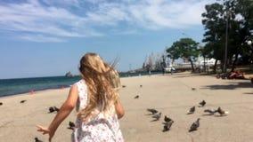 Маленький ребенок пугает голубей в обваловке около моря акции видеоматериалы