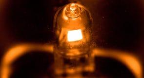 Маленький свет макроса стоковое изображение rf