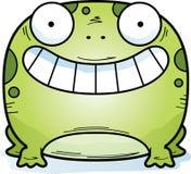 Маленький усмехаться лягушки иллюстрация вектора