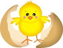 Маленький цыпленок Стоковое Изображение