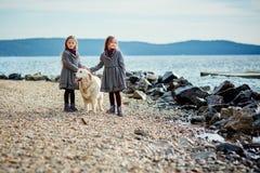 2 маленьких двойных сестры на прогулке с собакой на пляже Стоковое Изображение RF