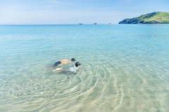 2 маленьких дет плавая на пляже Стоковые Фотографии RF