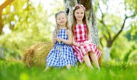 2 маленьких сестры сидя на стоге сена в яблоне садовничают на теплый и солнечный летний день Стоковое Фото