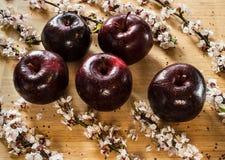 5 малиновые зрелые яблоки и ветвей яблони с цветками кладут на деревянную разделочную доску Стоковые Фотографии RF