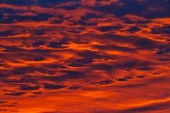 Малиновые облака в октябре на восходе солнца стоковое фото