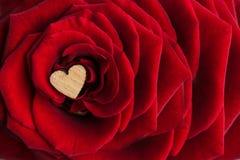 Малое деревянное сердце в середине лепестков роскошного re Стоковые Изображения