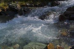 Малое река в горах Altai стоковое фото rf