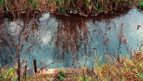 Малое река пропуская в деревне сток-видео