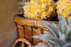 Малые ананасы в корзине Стоковые Изображения RF