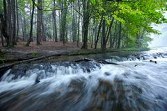 Малые водопады вызвали шум стоковые фотографии rf