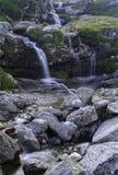 малые водопады Стоковые Фотографии RF