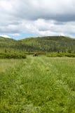 Малые воздушные судн принимая на траву, взлётно-посадочная дорожка страны Стоковое Фото