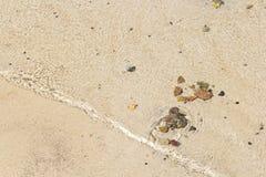Малые волны на пляже Стоковая Фотография