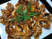 Малые сваренные tartlets сыра Стоковое фото RF
